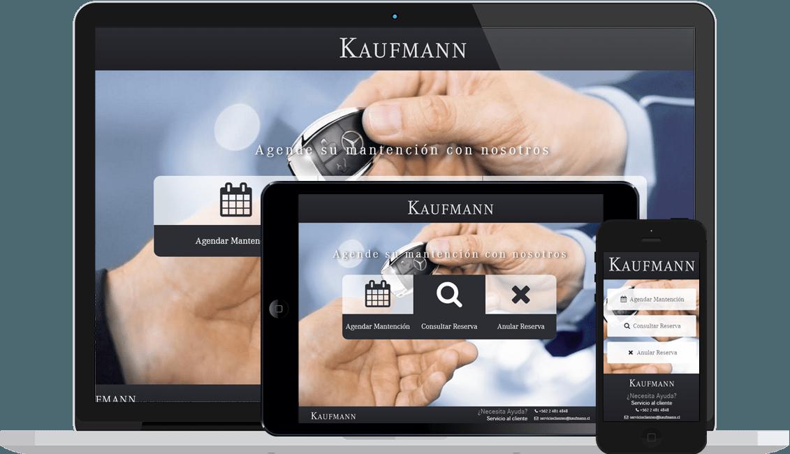 Sistema de Reservas Kaufmann