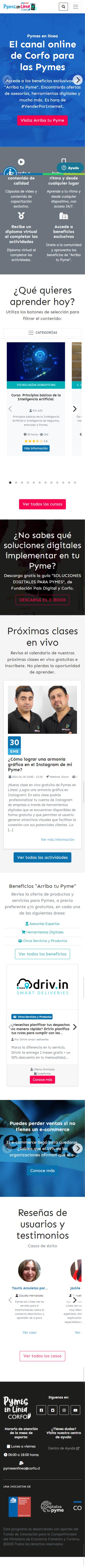 Sitio web Pymes en Línea